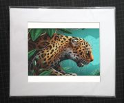 8x10matted_jaguar