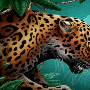 jaguar art print