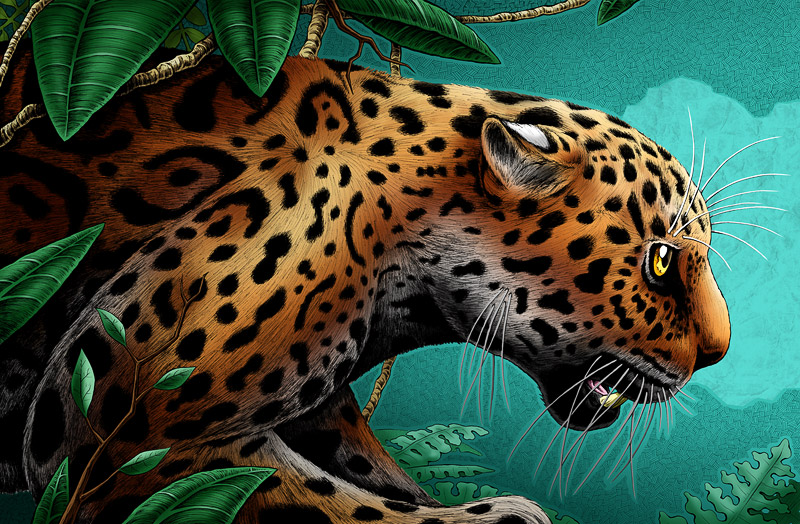 """Jaguar"""